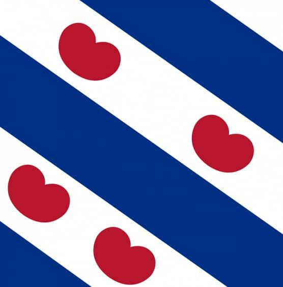 Friesland werkgebied SchoneVloeren.nl