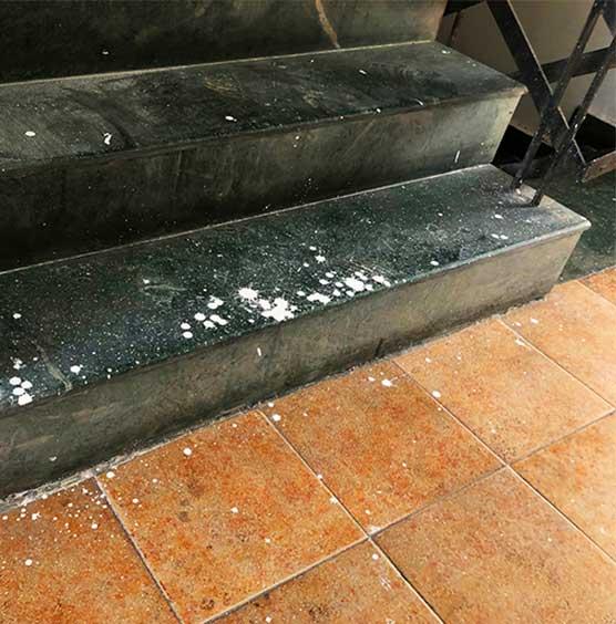granieten trap vloer laten schoonmaken SchoneVloeren.nl