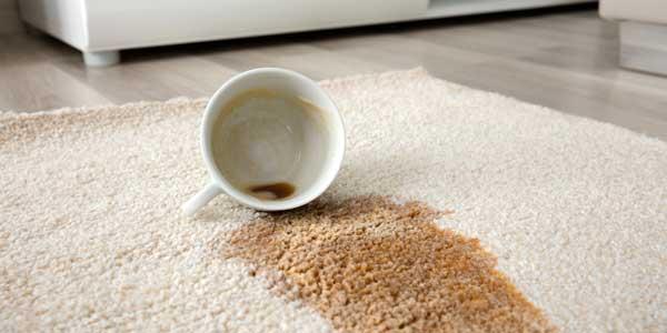 voorbeelden vloer reiniging uit de dagelijkse praktijk