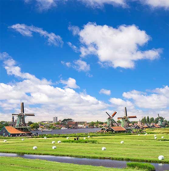 werkgebieden SchoneVloeren.nl